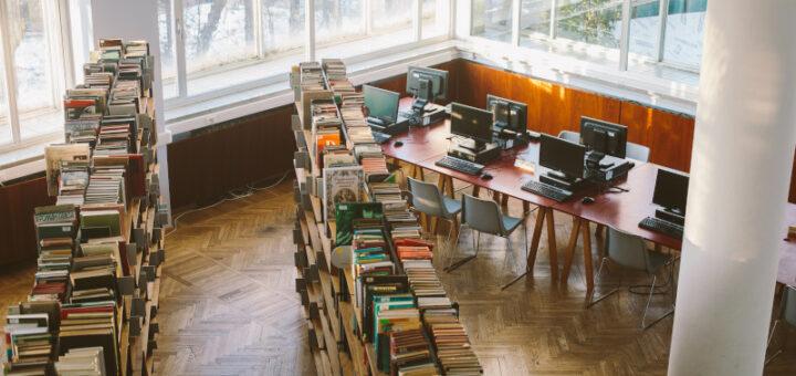 «Bücher in der Bibliothek». Quelle: pexels.com